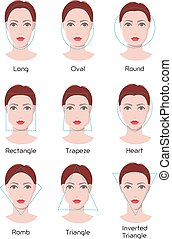Face type infographics - Vector infographics of woman face...