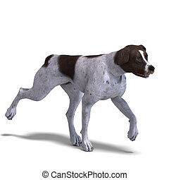 German Short Hair Dog 3D rendering with clipping path and...