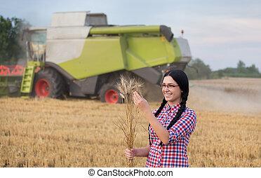 trigo, niña, cosecha