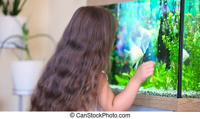 girl looking at aquarium