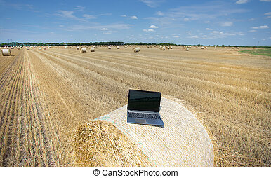 Laptop on rolled bale on field - Laptop on rolled bale on...