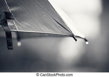 Umbrella during rain - Rainy day. Close up view of the drop...