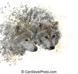 Two wolves watercolor - digital painting of  Two wolves