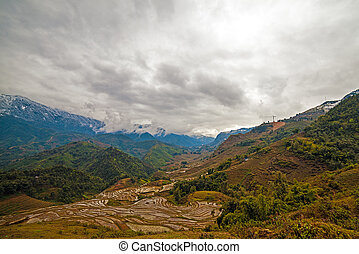 Rice field terraces Sapa Vietnam - The Rice field terraces...