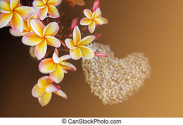 Yellow and pink flowers plumeria or frangipani bunch on dark background with pebble arrangement to heart shape blurred background, sweet harmony nature flowers background plumeria or frangipani in blossom summer mood