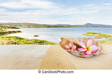 Pink flower plumeria or frangipani in sea conch shell on...