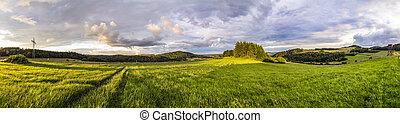 rural Eifel landscape with forest and green meadow - rural...