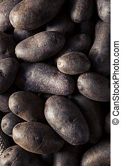 Raw Organic Purple Potatoes in a Basket