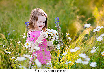 Little girl in daisy flower field - Child picking wild daisy...