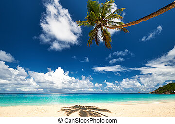 Beautiful Anse Intendance beach at Seychelles - Beautiful...