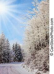 Christmas morning - Bright and sunny Christmas morning. Ski...