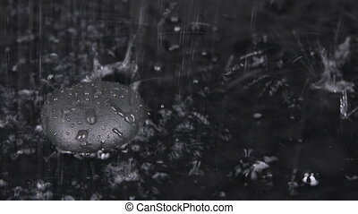 Falling rain drops in the water with black stone