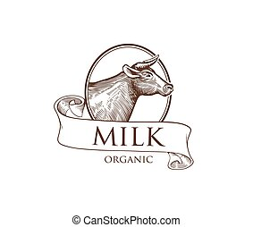 Logo Cow in a Cameo with Ribbons on a white background. Vector illustration in Vintage Engraving Style. Grunge label for the farm, agricultural organizations, milk product. Sticker depicting cow. Isolated.