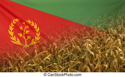 Eritrea Nutrition Concept Corn field with fabric Flag -...