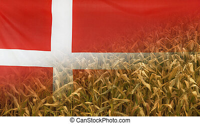Denmark Nutrition Concept Corn field with fabric Flag -...