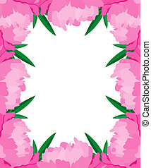 Vector frame with peonies