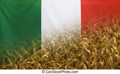 Italy Nutrition Concept Corn field with fabric Flag -...