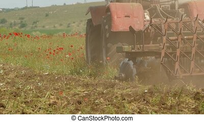 Tractor Cutting Field With Weeds