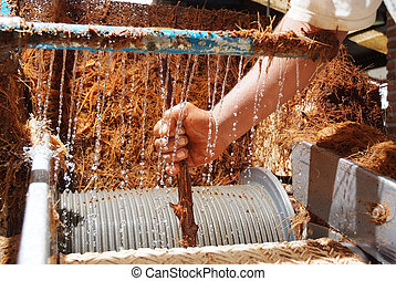 Agave tequila production - Process of production of the...