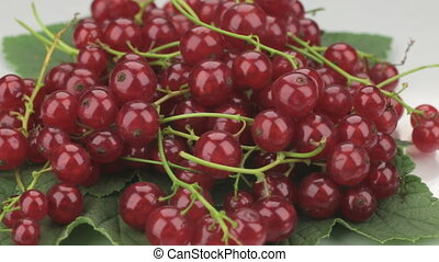 Pile of fresh, ripe, juicy berries red currant whirl Red...