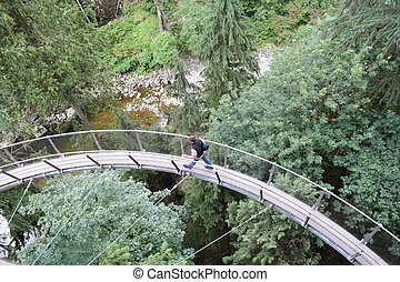 Cliff Walk - Capilano Bridge
