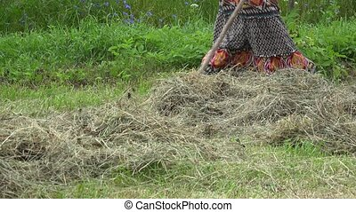 Young pretty woman in dress rake hay dry grass near...