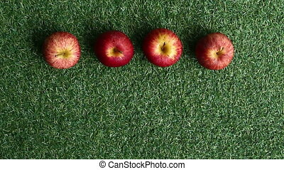 apples on grass background