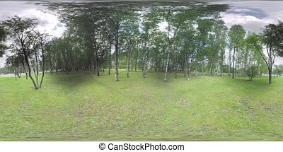 360 VR Green park by the road with car traffic in Moscow,...