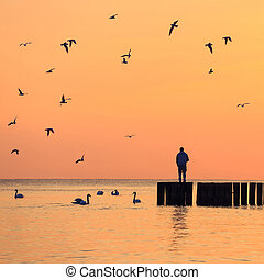 silhouette of a man standing on a breakwater against the sky...