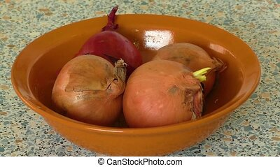 Onions in bowl - Yellow and red onions in bowl