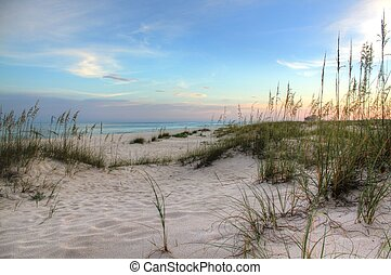 Sea Oats and Sunset - colorful sky on the beach