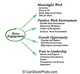 What drives engagement