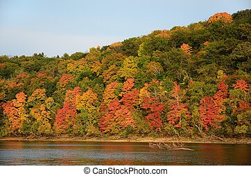 Fall Colors Along the St. Croix River near Stillwater,...