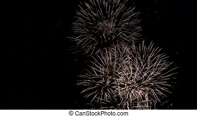 fireworks in the night sky - beautiful fireworks in the...