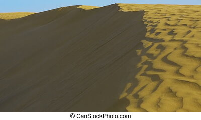 Dunes of Thar desert - Sand dunes in the Thar desert,...
