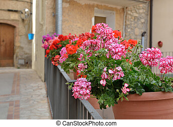 Street decorated with flowers in the pots - There are a row...