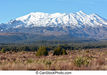 Landscape of Mount Ruapehu the highest mountain in the North...