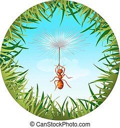 ant in the sky
