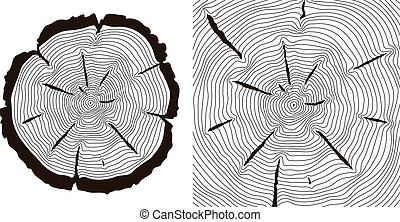 Tree growth rings, saw trunk cuts vector illustration