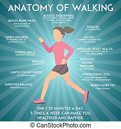 Walking effects infographic vector illustration. Fitness and...