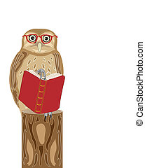 wise owl - a hand drawn illustration of a wise owl sat on a...