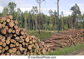 Cut trees in nature background