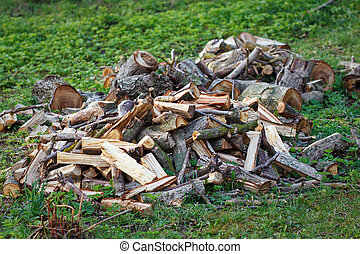Stack of firewood on the grass