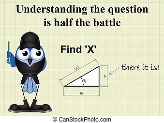 Find X mathematical question - Comical answer to find X...