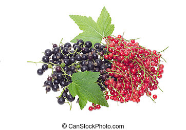 Redcurrant and blackcurrant on a light background
