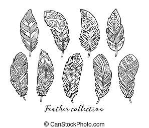 Vector illustration of black boho feather - Native american,...