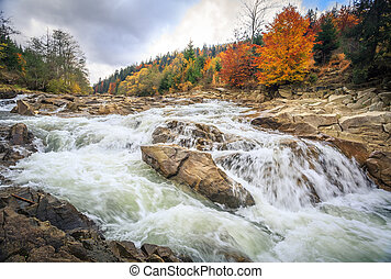 beautiful fast mountain river in autumn forest