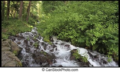 Cascading Waterfall in Scenic Columbia River Gorge