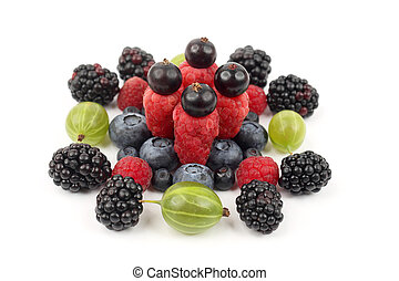different berries in order laid out on a white background