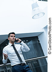 Ready for the success - Young, elegant businessman talking...